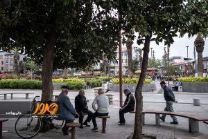 پیاده-راه-شهرداری
